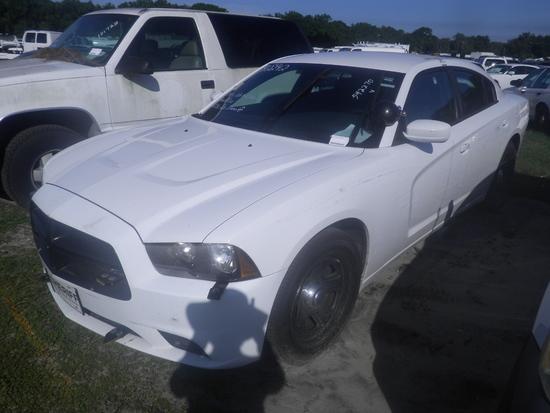 11-05124 (Cars-Sedan 4D)  Seller: Gov/Hillsborough County Sheriff-s 2013 DODG CHARGER