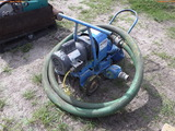 8-02156 (Equip.-Pump)  Seller:Private/Dealer WATER PUMP WITH HOSES