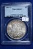 1884-O MS62, PCGS Morgan Silver Dollar
