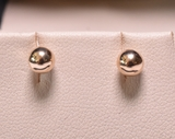 14 kt. Yellow Gold Stud Earrings