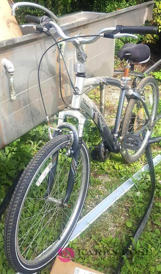 Avalon bike C1