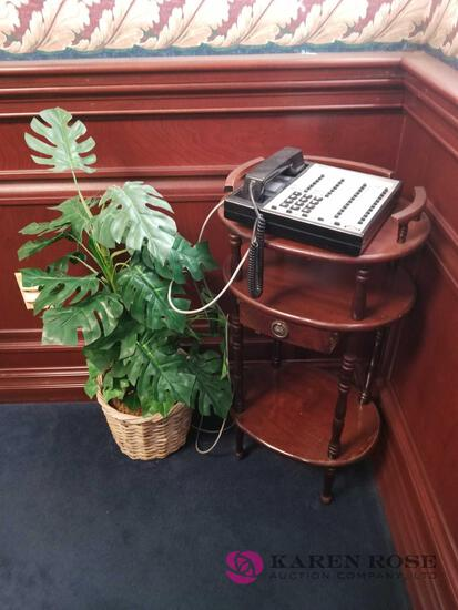 O1 - Telephone Stand, Telephone, and Plant