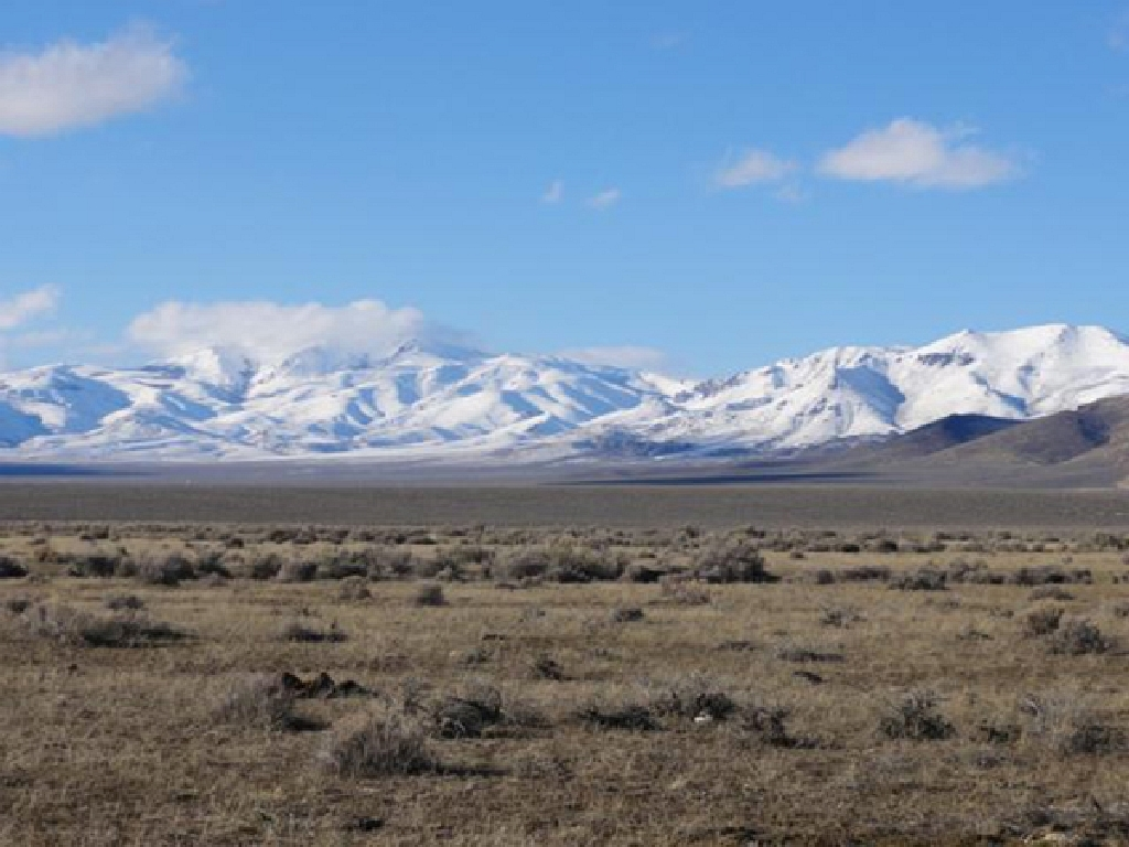 We Buy Land in Nevada Fast!