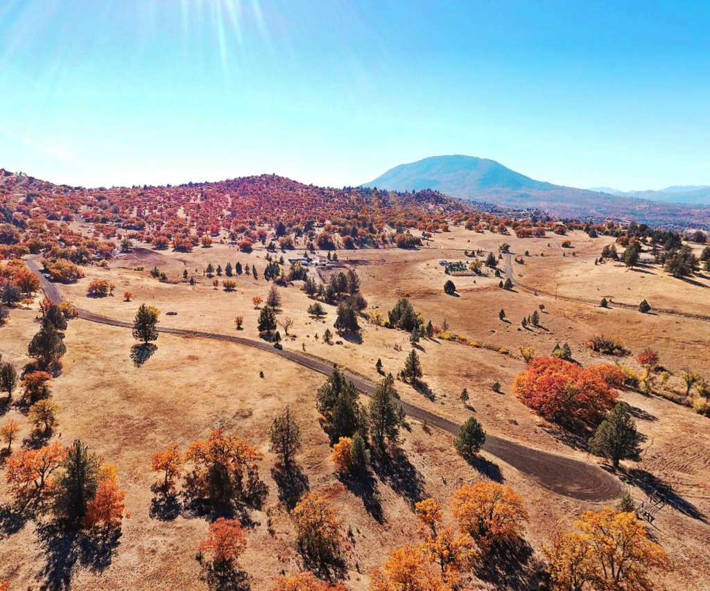 BEAUTIFUL CALIFORNIA LAND IN KLAMATH RIVER SUBDIVISION! HOME SITE! TAKE OVER PAYMENTS!