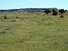 BREATHTAKING 40 ACRE IN BENT COUNTY COLORADO!! ASSUME PAYMENTS FORECLOSURE! GREAT INVESTMENT!