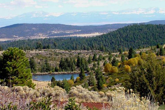 INCREDIBLE 1.69 ACRE CALIFORNIA LAND IN KLAMATH RIVER SUBDIVISION! HOME SITE! TAKE OVER PAYMENTS!