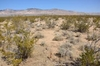 California City, CA 2.5 Acre Mini Ranchette! Close to Booming Lancaster! Just Take over Payments!