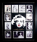 *Rare Marilyn Monroe Laser Cut Mat Museum Framed Collage - Plate Signed