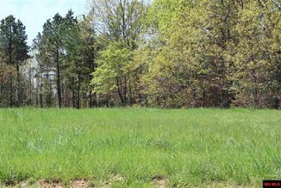 Gorgeous Lot in Cleburne County, Arkansas!!! Cash Sale! Cash File Number 167543 (Vault_PNR)