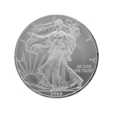 Rare 1 Ounce American Silver Eagle Great Investment