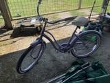 Schwinn Bike (Purple)