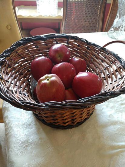 Basket of artificial apples