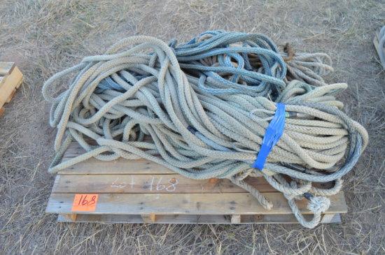 Bull Ropes
