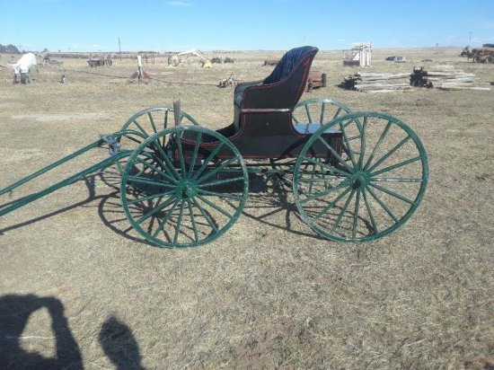 Doctor's Horse Drawn Buggy