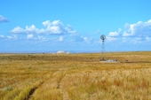 1,066 Acres CRP Land & Pasture