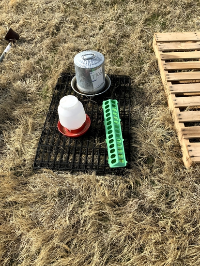 Chicken Feeders, Chicken Water, Collapsible Cage