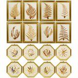 Victorian Pressed Ferns
