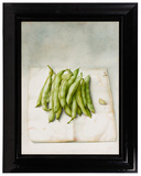 Anneke van Brussel (Dutch, b.1949) 'Green Beans' Oil and Graphite on Paper on Panel
