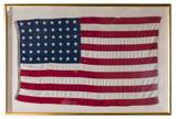 Annin 'Defiance' Cotton 48-Star American Flag