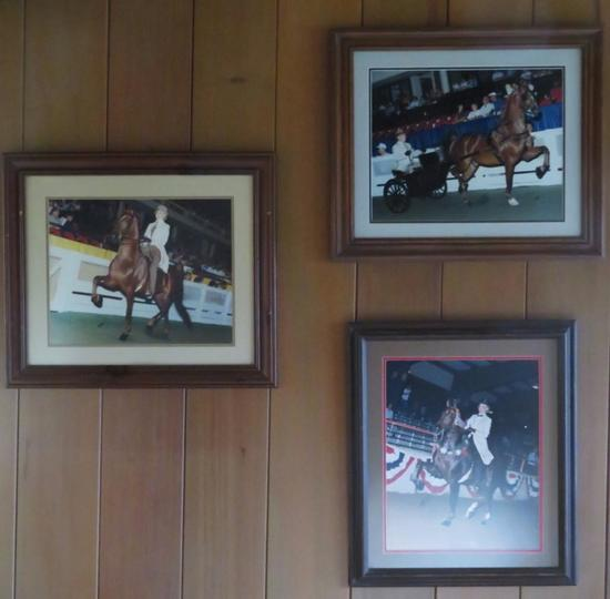 Three Framed Horse Showing photographs