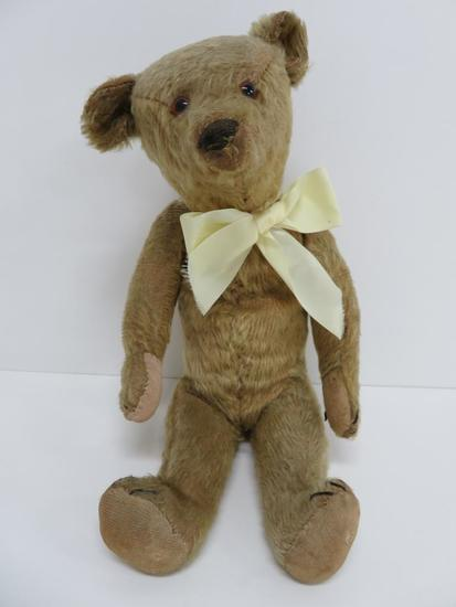 "Mohair Teddy Bear, excelsior filled, 14"", glass eyes, hump back"