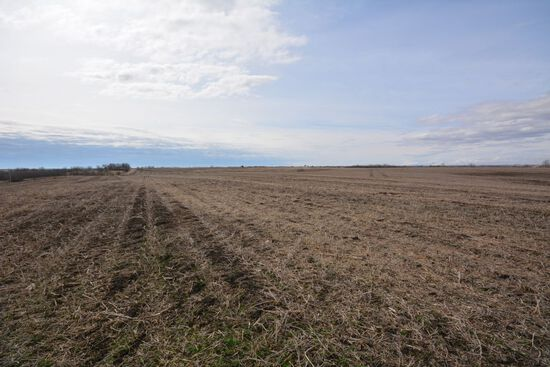 Nodaway County - 70 Acres +/-  w/ 85% Tillable Ground
