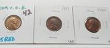 3 Lincoln Wheat Cents: 1909 VDB CH BU Red, 1919 Unc, 1934 BU