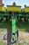 "John Deere 1750 Max Emerge Plus Conservation Planter, 6 Row 30"", Dry Fertilizer, Trash Cleaners, Mar Image 2"