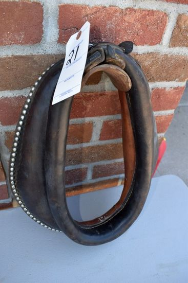 """14"""" Spotted Pony Collar, Used"""
