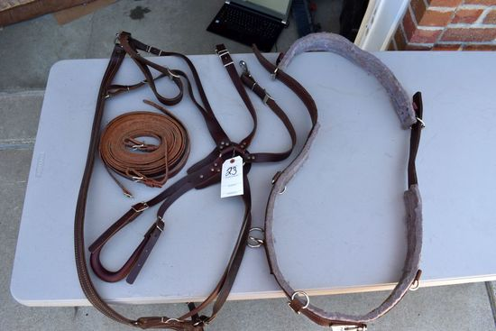 Single Training Harness, New, With Lines
