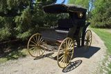 Plantation Buggy, 2 Seat, Top, Wooden Wheels