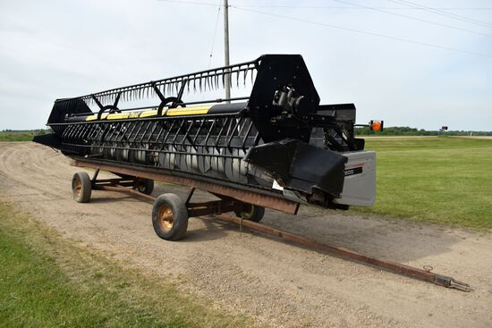 "2002 Gleaner 800 Bean Head, Crary Air Reel, 3"" Cut, Poly Skids, Sells With Shop Built Head Trailer,"