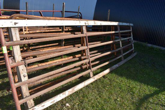 16' Cattle Gate