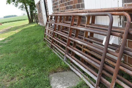 (2) 13' Cattle Tube Gates