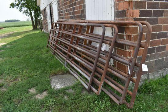 (2) 16' Cattle Tube Gates