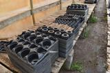 Assortment of plastic plant trays , located in GH 24