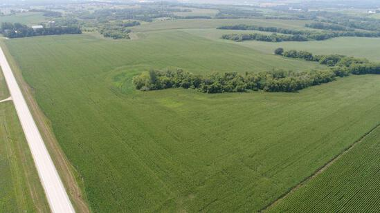 Parcel/Lot 3 - 147.62 Acres Of Bare Crop Land, In Section 13, Minneola Township, Goodhue Co. MN