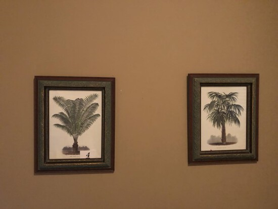 2 framed palm trees art
