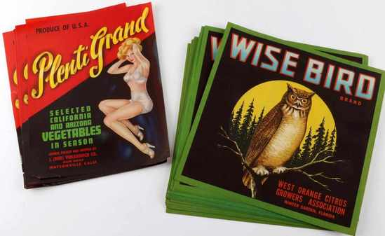 WISE BIRD FLORIDA PLENTI GRAND CA. CRATE LABEL LOT
