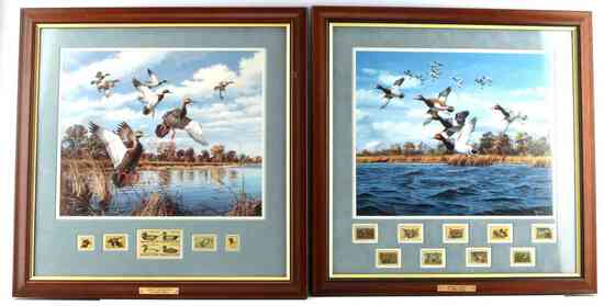 LOT OF 2 FRAMED DUCK PRINTS BY DAVID MAASS