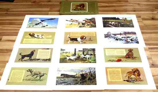 LOT OF 12 REMINGTON LITHOGRAPH HUNTING DOG PRINTS
