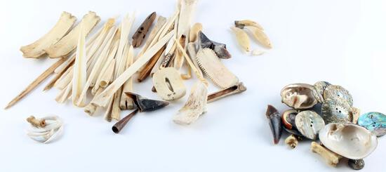 OVER 30 PIECES OF NATIVE AMERICAN SHELL BONE TEETH