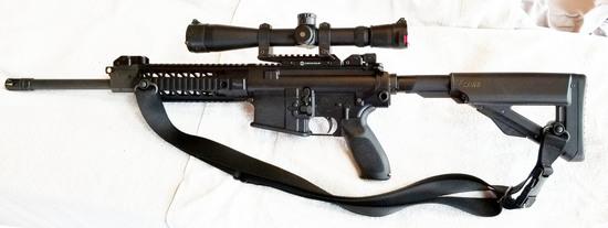 Sig 716 (scoped)
