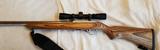 Ruger 1022 Carbine (scoped)