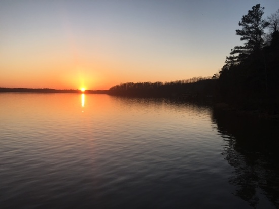 Lake Roanoke Rapids Real Estate