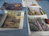 WILD LIFE PRINTS & OTHERS UNFRAMED