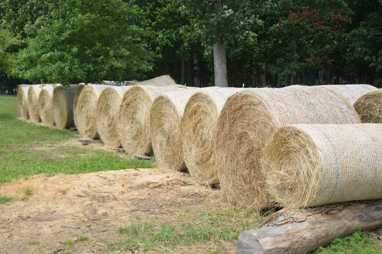 25.5 Clover/Timothy Hay Round Bales