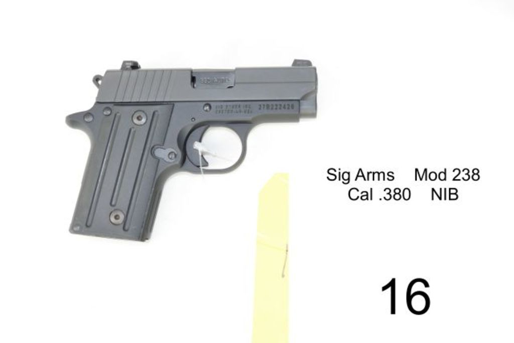 sig arms mod 238 cal 38 auctions online proxibid