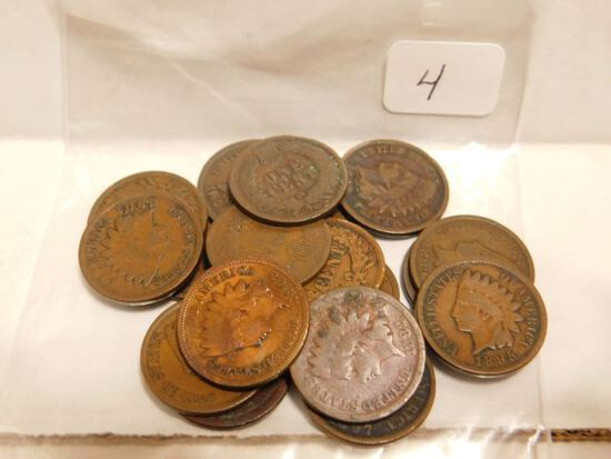 19 DIFFERENT INDIAN HEAD CENTS 1880-1908