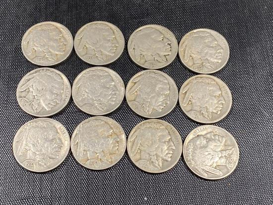 BUFFALO NICKEL COLLECTION STARTER, see description for complete list
